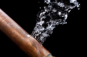 Not checking your water lines yearly, can be costly.